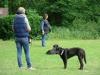 2012-06-03_hundetraining_189