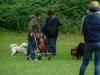 2012-06-03_hundetraining_191