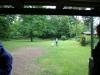 2012-06-03_hundetraining_197