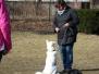 04.03.2012 Hundetraining