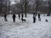 2012-02-05_hundetraining_01