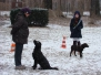 05.02.2012 Hundetraining