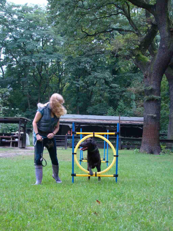 2012-08-05_hundetraining_055
