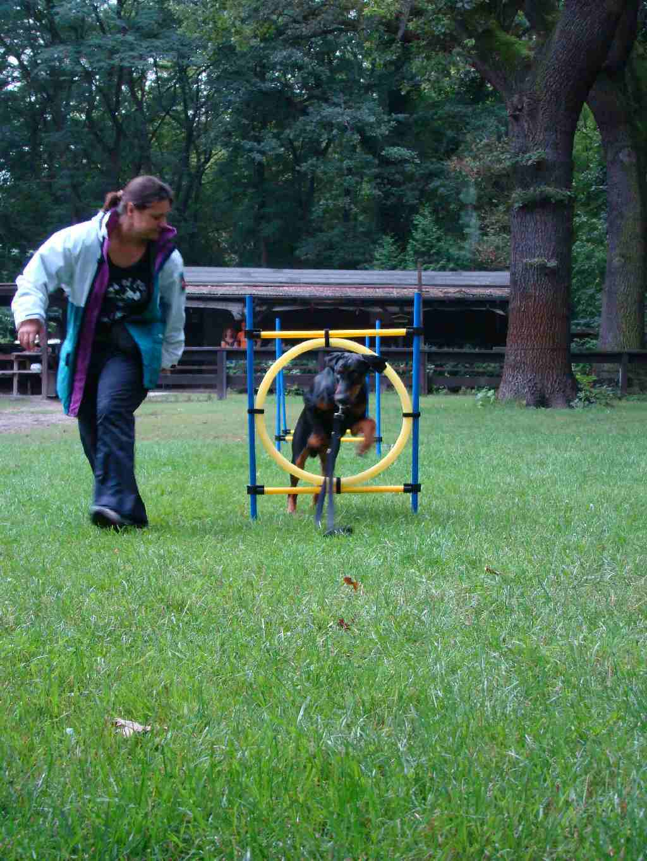 2012-08-05_hundetraining_066
