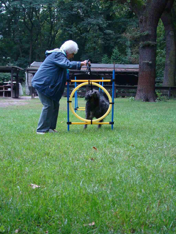 2012-08-05_hundetraining_068