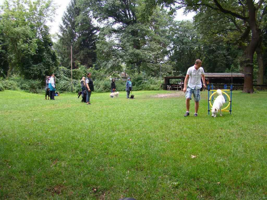 2012-08-05_hundetraining_076