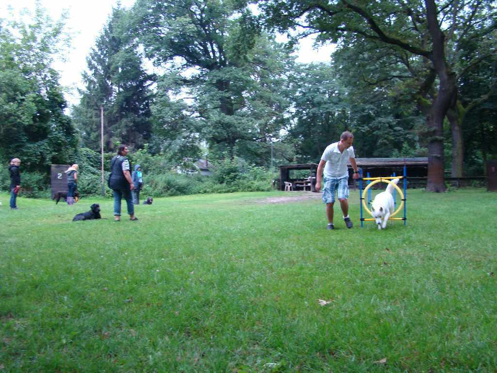 2012-08-05_hundetraining_080