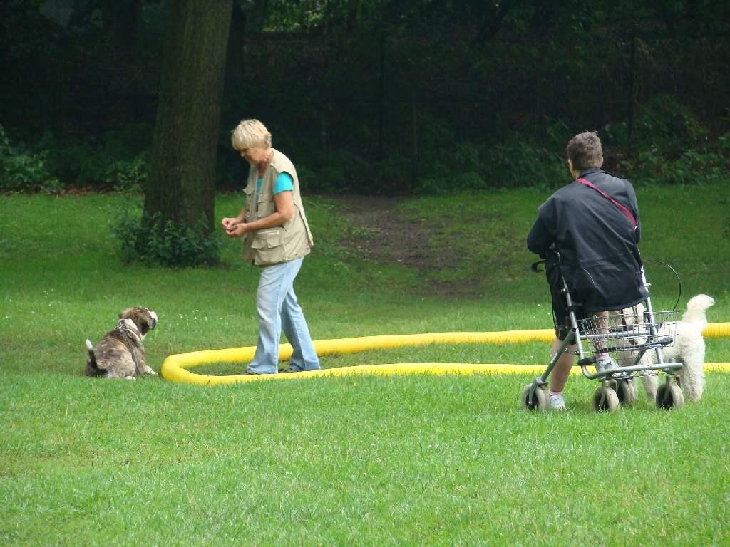 2012-08-05_hundetraining_112