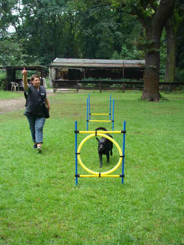 2012-08-05_hundetraining_129