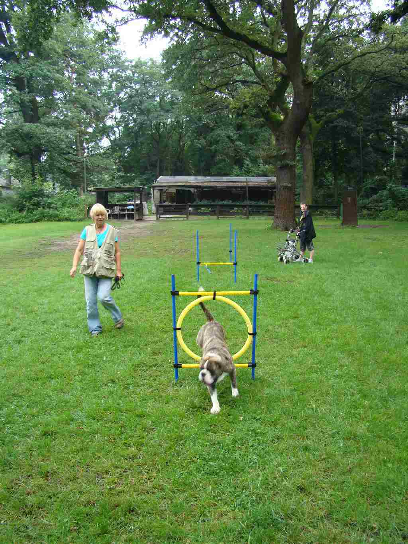2012-08-05_hundetraining_144