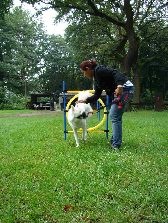 2012-08-05_hundetraining_148