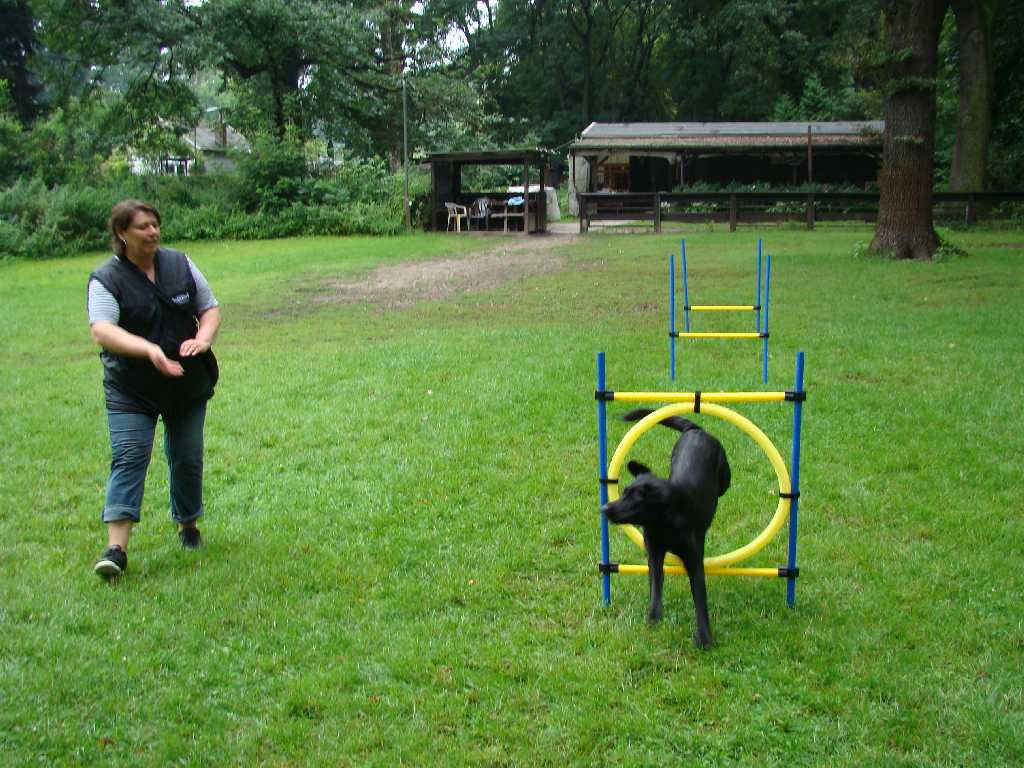 2012-08-05_hundetraining_152