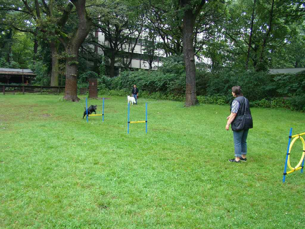 2012-08-05_hundetraining_165