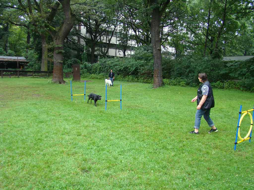 2012-08-05_hundetraining_166