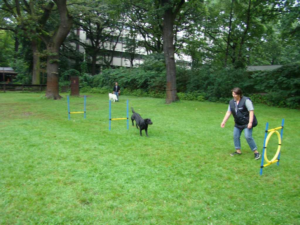 2012-08-05_hundetraining_167
