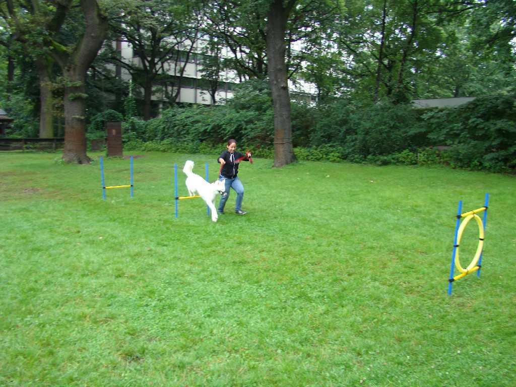 2012-08-05_hundetraining_171