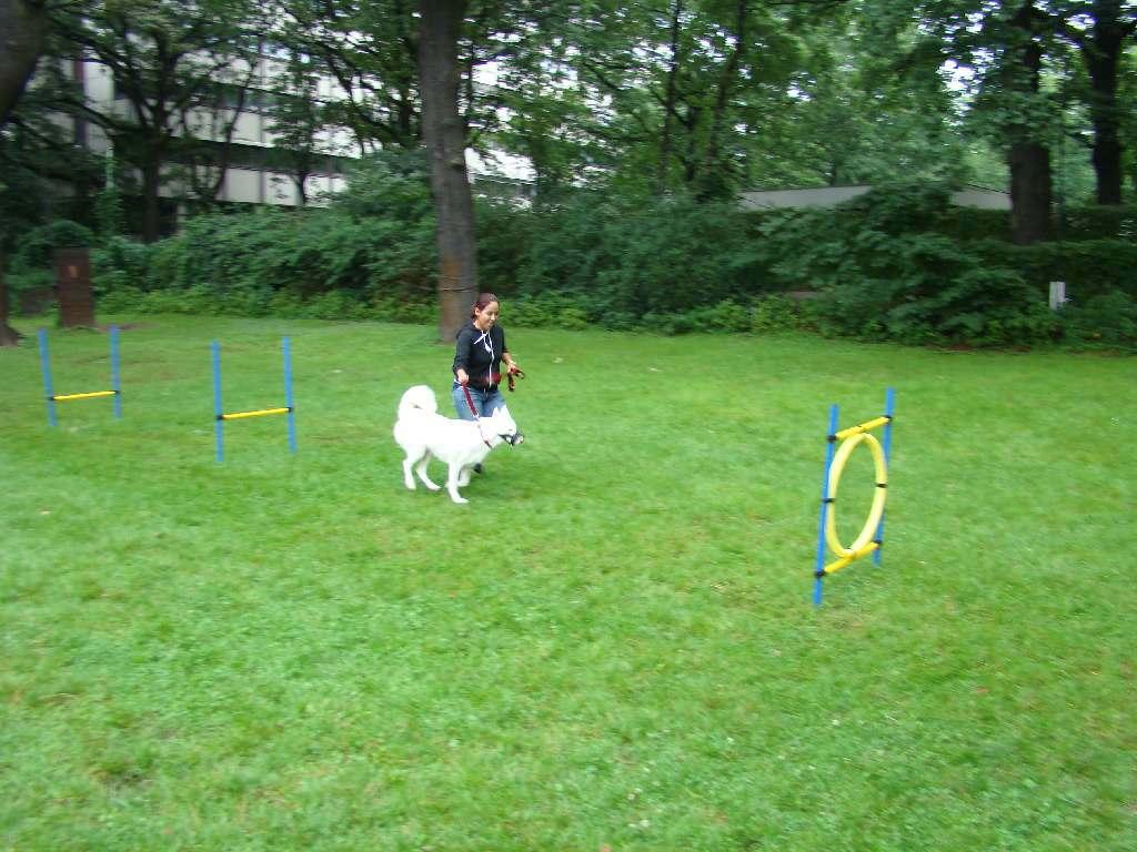 2012-08-05_hundetraining_172