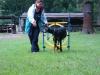 2012-08-05_hundetraining_062