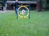 2012-08-05_hundetraining_069