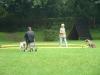 2012-08-05_hundetraining_117