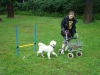 2012-08-05_hundetraining_134