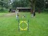 2012-08-05_hundetraining_143