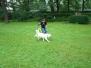 05.08.2012 Hundetraining