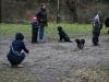 2012-01-08_hundetraining_17