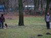 2012-01-08_hundetraining_56