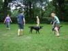 2012-07-08_hundetraining_20