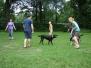 08.07.2012 Hundetraining