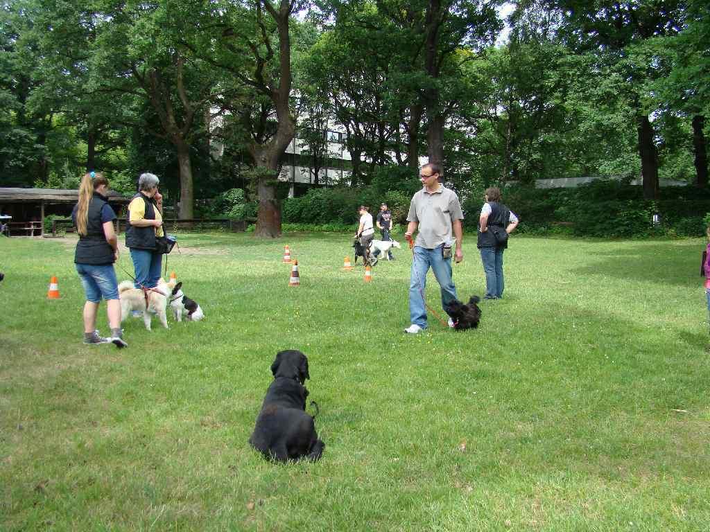2012-06-10_hundetraining_035