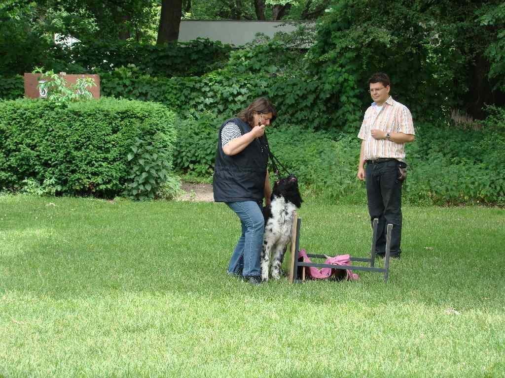 2012-06-10_hundetraining_081