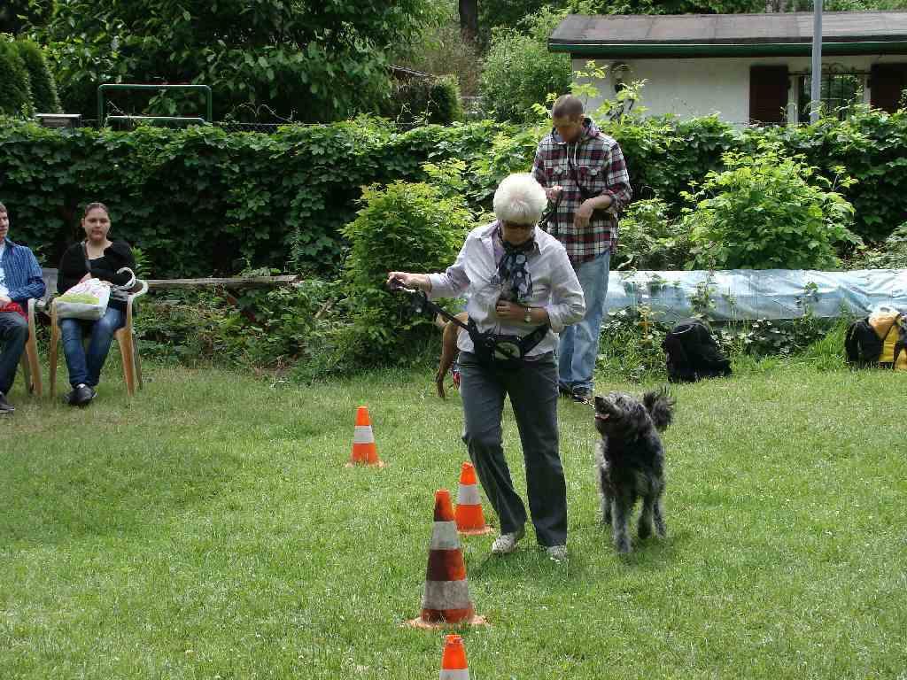 2012-06-10_hundetraining_128