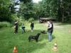 2012-06-10_hundetraining_001