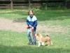 2012-06-10_hundetraining_005