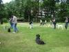 2012-06-10_hundetraining_028