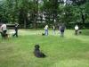2012-06-10_hundetraining_031