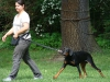 2012-06-10_hundetraining_037