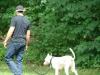 2012-06-10_hundetraining_043