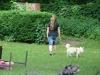 2012-06-10_hundetraining_046