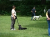 2012-06-10_hundetraining_049