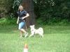 2012-06-10_hundetraining_055