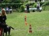 2012-06-10_hundetraining_125