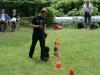 2012-06-10_hundetraining_127