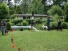 2012-06-10_hundetraining_129