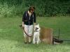 2012-06-10_hundetraining_143