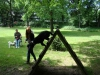 2012-06-10_hundetraining_183