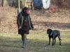 2014-01-12_hundetraining_79