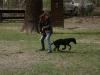 2012-04-15_hundetraining_030